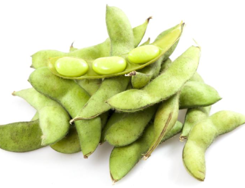 What You Need To Know About Soy Protein