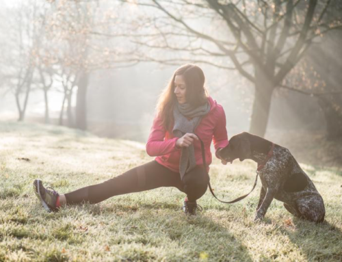 9 Ways Having a Dog Can Help You Get Fit